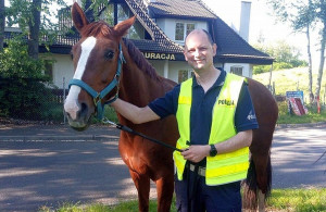 Konie bezpiecznie sprowadzono z autostrady