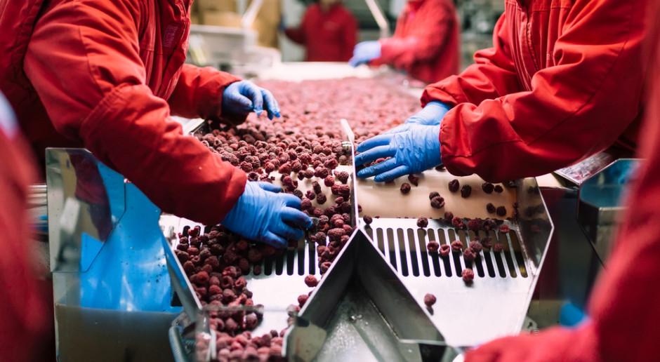 Pomorskie: Otwarto fabrykę żywności mrożonej Iglotex