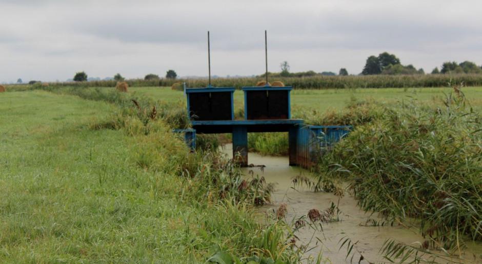 Wytyczne dla melioracji i retencji wód w związku z suszą. Wody Polskie reagują