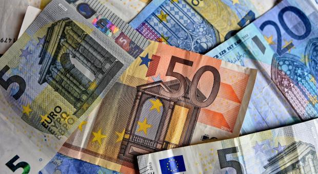 Strategie KE niepokoją unijnych ministrów rolnictwa