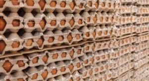 Polskie firmy wyeksportują do Singapuru żywność wartą około 5 mln zł