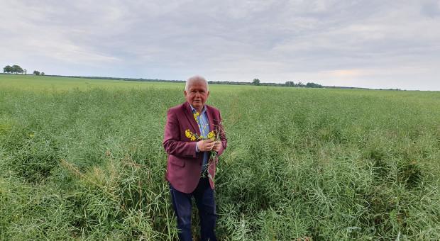 Przyszłość to hodowla odmian odpornych na agrofagi