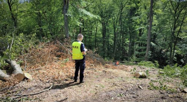Przy wycince drzew zginął pilarz