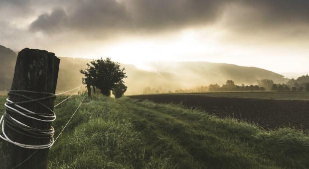 Bank chętnie zahandluje ziemią rolniczą