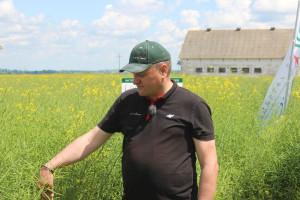 Rzepak w kompleksowej ochronie herbicydowej