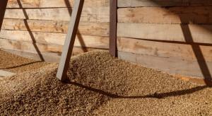 TGE szkoli rzeczoznawców jakości zbóż, strączkowych i oleistych