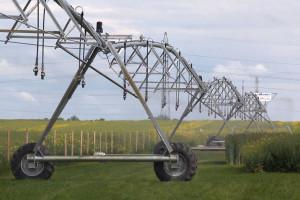 Inteligentna deszczownia mostowa na polach RZD w Minikowie