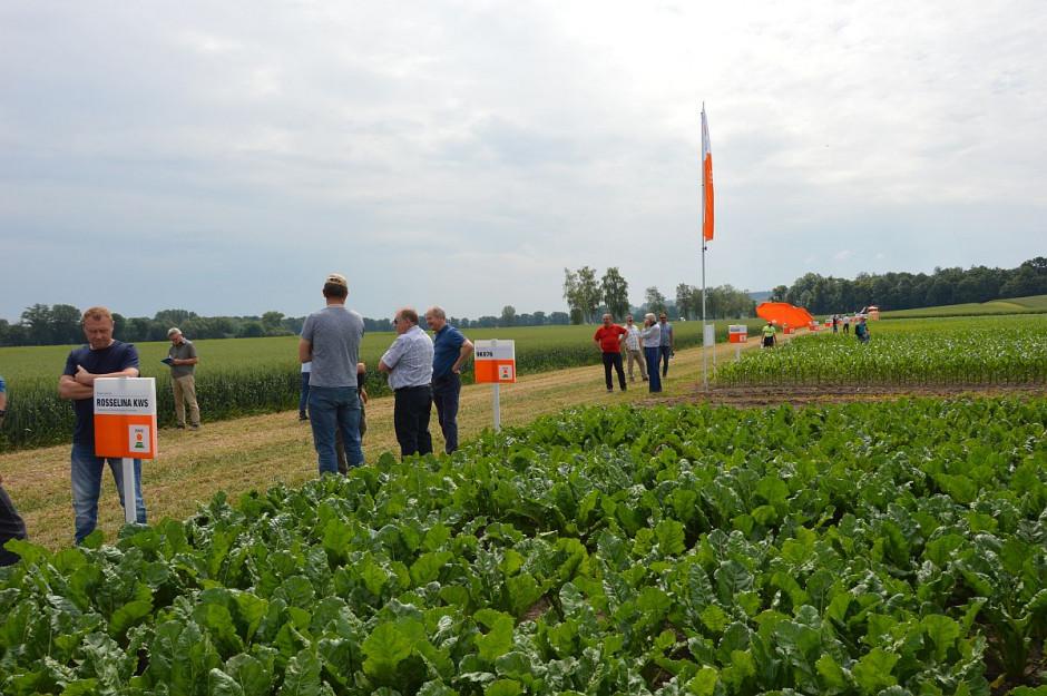 Demo farma KWS 2020; Fot. Katarzyna Szulc