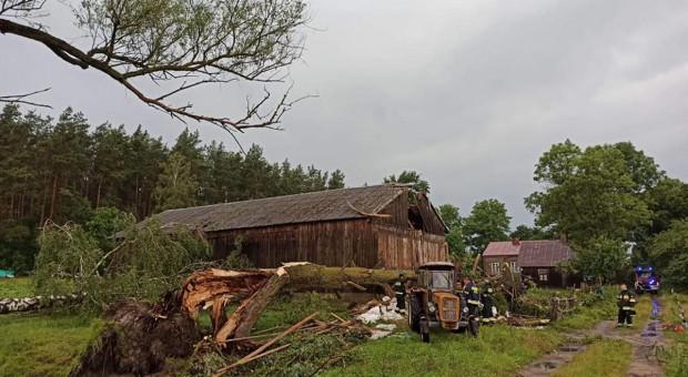 Drzewo runęło na stodołę, pod belkami uwięzione siedem jałówek