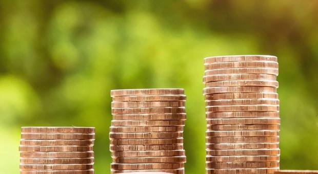 Stawki w ZUS zniechęcają do pozarolniczej działalności gospodarczej