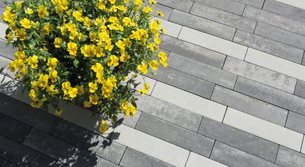 Znajdź swój sposób na letni i stylowy ogród