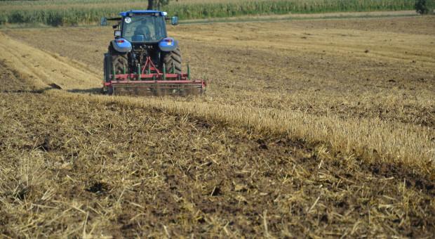 Uprawa pożniwna ograniczająca straty wilgoci z gleby – odc.6