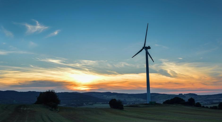 """Firmy kupują coraz więcej """"zielonego prądu"""""""