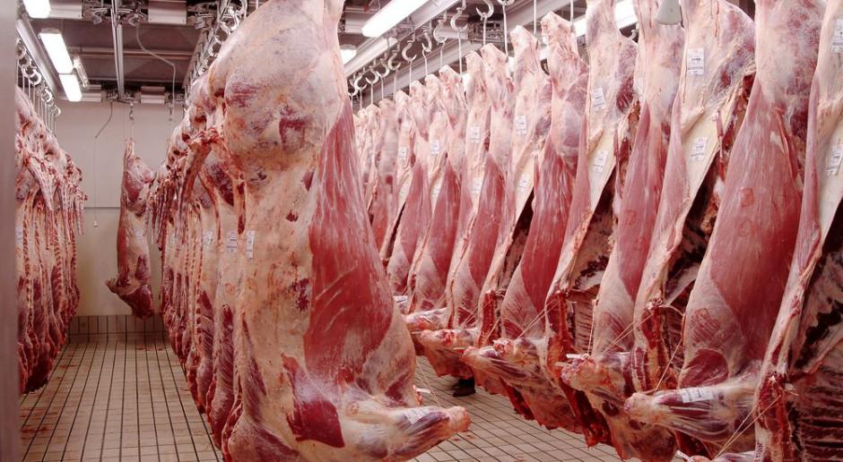 Niemcy: zatrudnienie bezpośrednie w dużych zakładach mięsnych