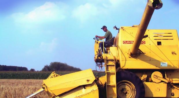 IGC: Mniejsza prognoza światowej produkcji zbóż w kończącym się sezonie, większa w nowym