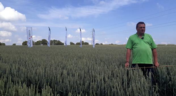CAR – zestaw herbicydów do jesiennego odchwaszczania zbóż