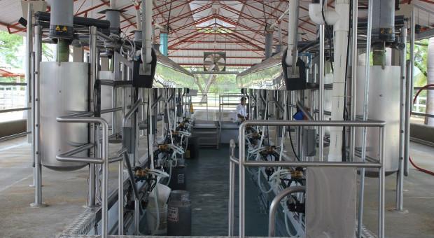 Francja: Ograniczono produkcję mleka w 22 tys. gospodarstw