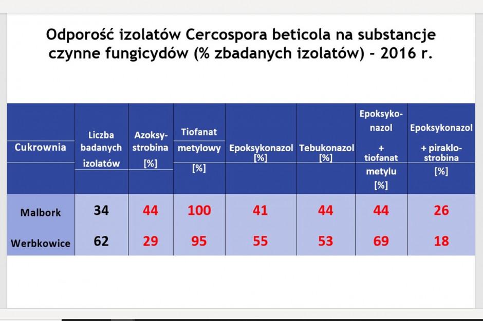 Źródło: Prof. Jacek Piszczek