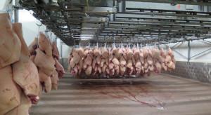 Chiny wstrzymały import wieprzowiny z Holandii