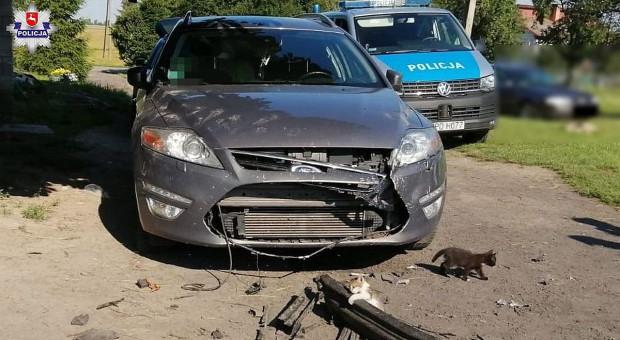 Psy goniły koty i zdemolowały samochód