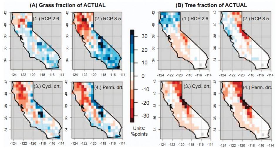 Użytki zielone (A) i lasy (B) wycofują się lub rozwijają w odpowiedzi na zmiany klimatu w XXI wieku. Niebieski oznacza rozszerzenie, a czerwony zmniejszanie. Lasy cofają się we wszystkich przyszłych klimatach z wyjątkiem tych związanych z agresywną redukcją emisji (RCP 2.6). Tereny trawiaste wykazują zdolność do ekspansji geograficznej wraz ze zmianami klimatycznymi, w warunkach ekstremalnej suszy (3. i 4)