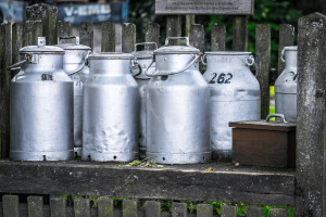 KE: Perspektywy dla rynku mleka