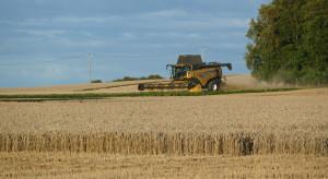 Francja: Niskie prognozy zbiorów zbóż