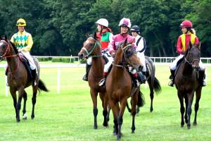 Stan polskiej hodowli koni wyścigowych