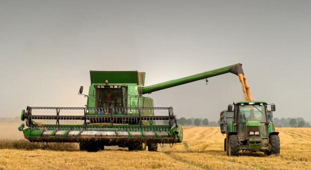 Coraz gorsze prognozy zbiorów zbóż w UE
