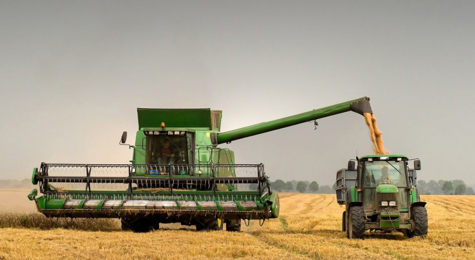 IZP: Dobre zbiory, ale marna sprzedaż zbóż