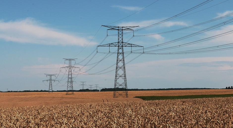 Ceny prądu dla gospodarstw domowych nie zmienią się