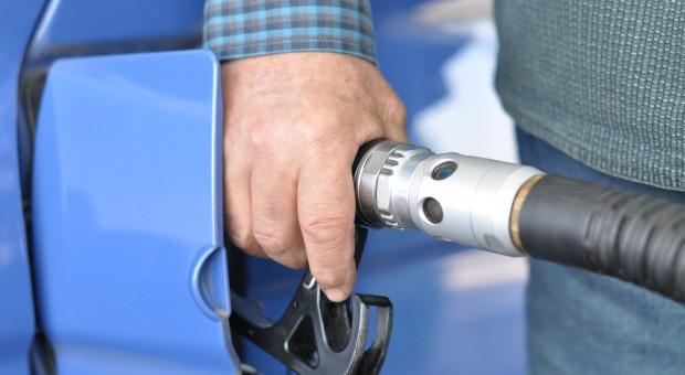 Ceny na stacjach paliw stabilne z możliwością minimalnej korekty w dół