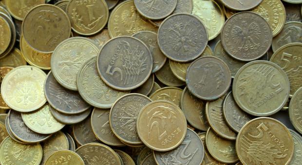Czy w Polsce można wprowadzić wyższy limit de minimis?