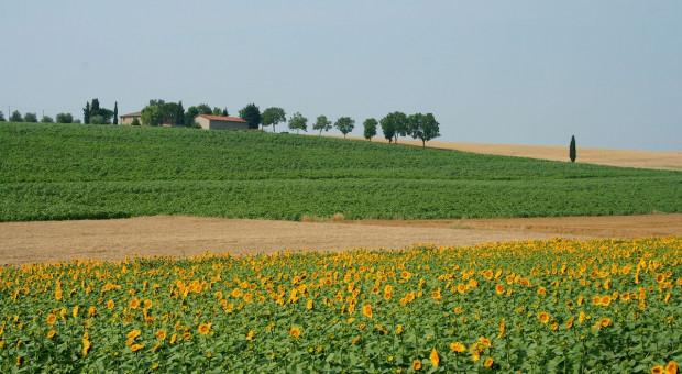 Włochy: Zjednoczeni rolnicy i ekolodzy