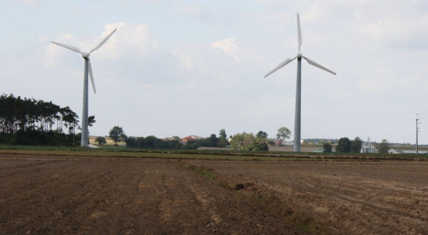Emilewicz: nowe regulacje ws. elektrowni wiatrowych do końca tego roku