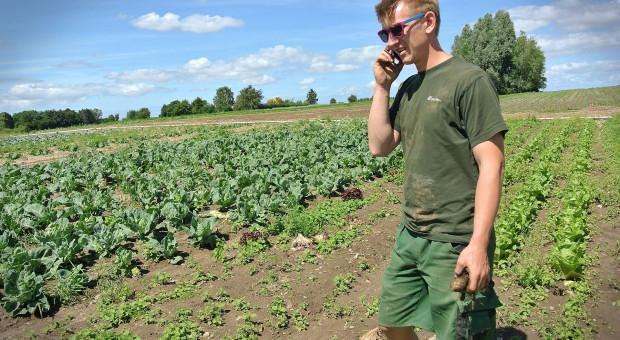 PAIH: możliwość eksportu żywności ekologicznej do Danii i Szwecji