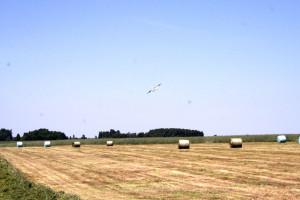 Czy możliwe będzie skrócenie zobowiązań rolno-środowiskowych w PROW?