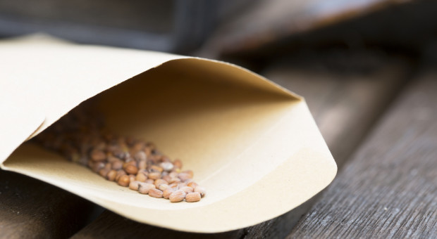 Apel policji: Jeśli ktoś otrzyma paczkę z nieoznakowanymi nasionami, niech się z nami skontaktuje