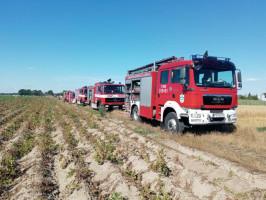 Z pożarem walczyli strażacy-ochotnicy z 5 okolicznych jednostek