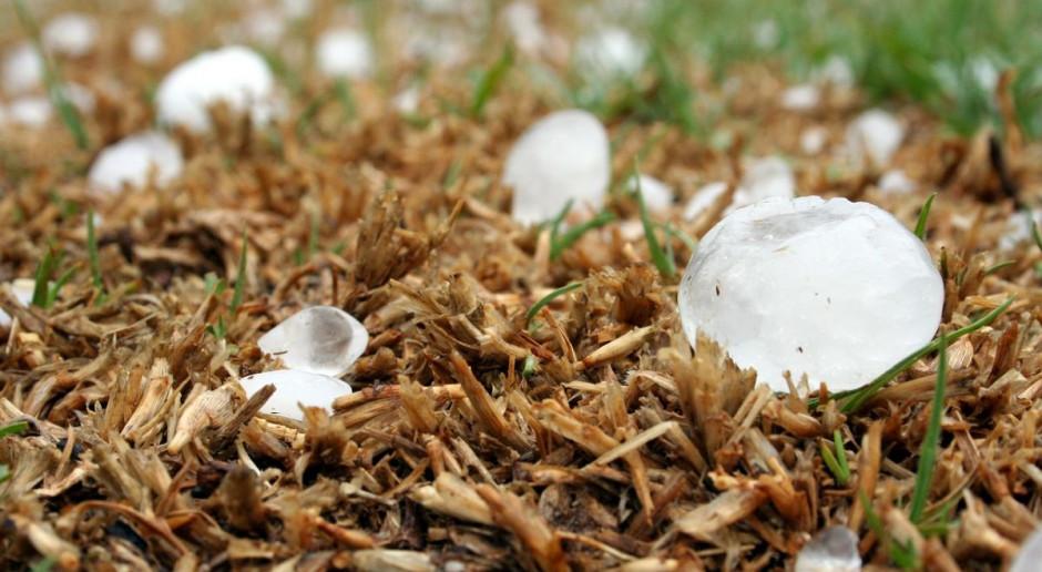 IMGW ostrzega przed burzami, silnym deszczem oraz gradem