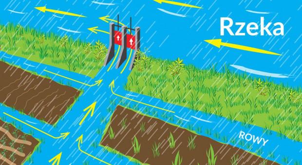 Czy retencja korytowa pozwoli skutecznie walczyć z suszą rolniczą?