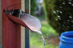 Sposobów, na jakie można pozyskiwać wodę z nieba jest naprawdę wiele np. wykorzystując pojemniki czy beczki ogrodowe, a skończywszy na specjalnym rozwiązaniu montowanym na rynnie (tzw. wyłapywacz), które pozwala szybko napełniać zbiorniki o pojemności nawet kilku tysięcy litrów. Foto. Galeco