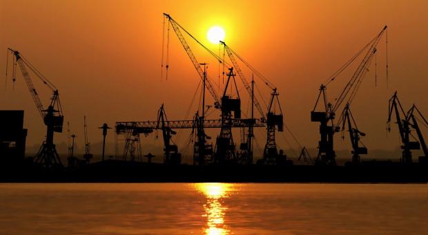 Rosja: Rolnictwo skupia się na dalszej ekspansji eksportu