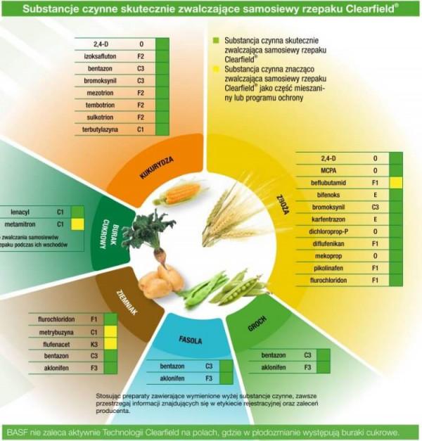 Substancje zwalczające samosiewy rzepaku. Źródło: BASF