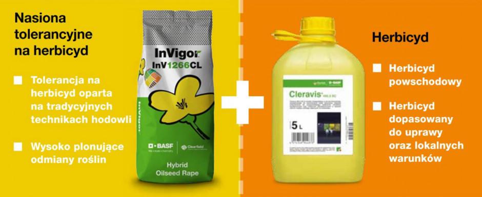 Na technologię Clearfield® składają się specjalne nasiona rzepaku CL oraz herbicyd Cleravis® 492,5 SC. Źródło: BASF