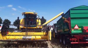 Rzepak w trzech technologiach uprawy cz.3 – jakie uzyskano plony?