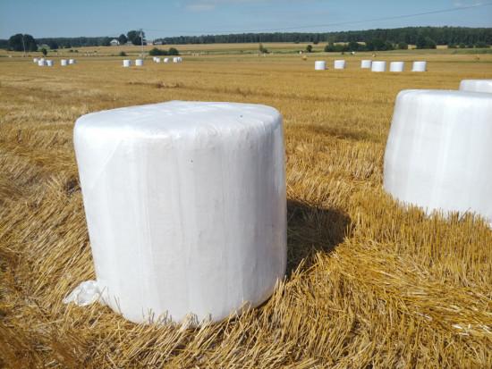 Warstw folii na beli słomy jest możliwie najmniej, fot.kh