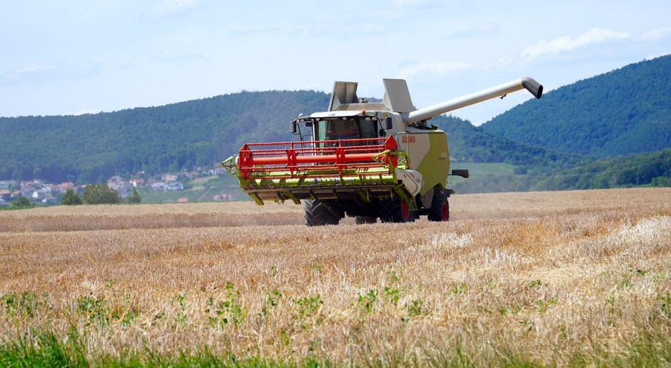 Ukraina: Ministerstwo gospodarki obniżyło prognozę produkcji zbóż