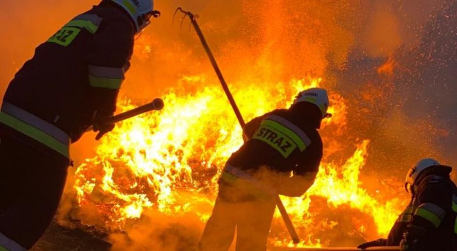 Nocny pożar w wytwórni pelletu