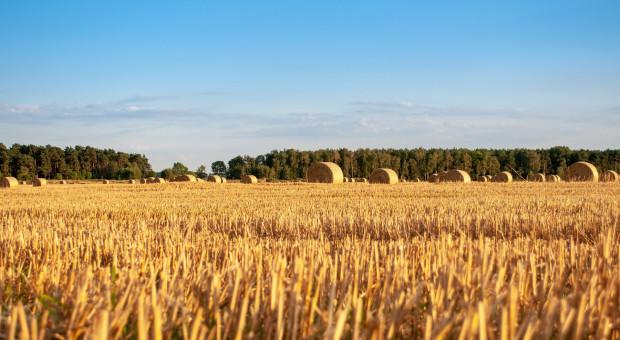 Rolnicy zarabiają 26,3 proc. mniej niż wynoszą przeciętne zarobki